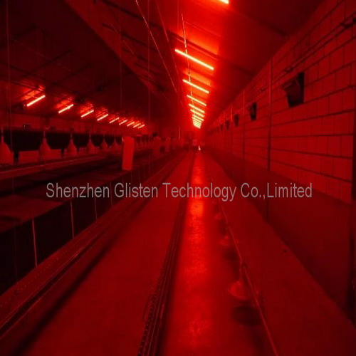 Red and white LED tube